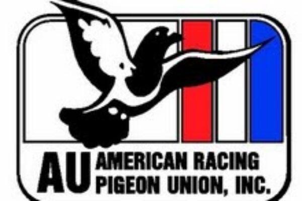 American Racing Pigeon Union | AU | ARPU