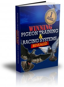 Winning Pigeon Training and Racing Systems