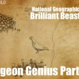 Brilliant Beasts: Pigeon Genius Part 4/4 This is part 4 of a brilliant series from National Geographic called Brilliant Beasts: Pigeon Genius. This series showcases how amazing these creatures are and […]