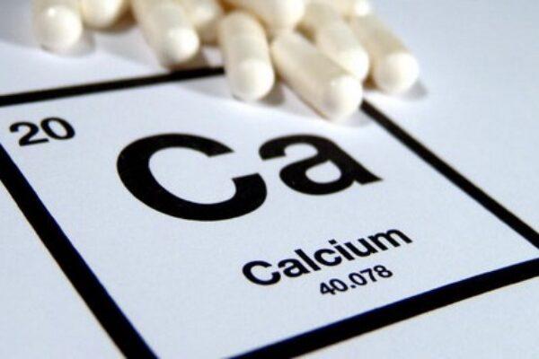 Calcium in Racing Pigeons