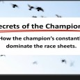 Click Here For More Information *Video* The Secret's of The Champion's In this video we cover why most people struggle in the sport of pigeon racing and ultimately end up […]