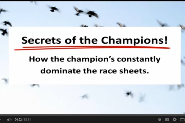 *Video* The Secret's of The Champion's
